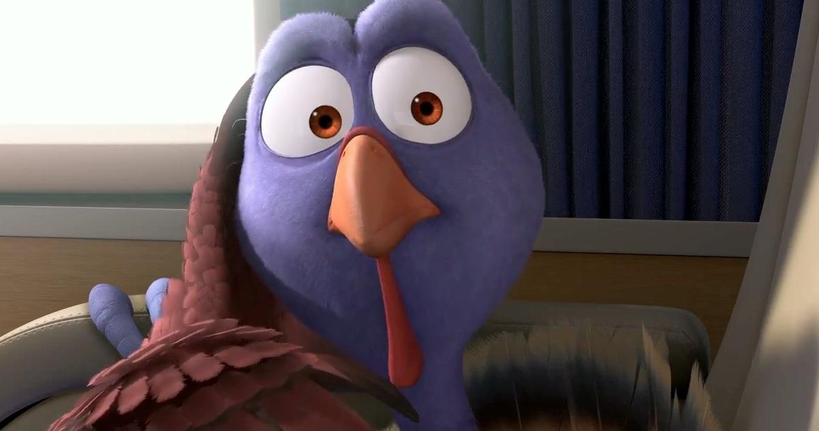Owen Bird